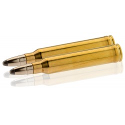Munition grande chasse RWS Cal. 300 Win type UNI-TM-KS-DK-EVO