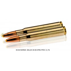 Munitions à percussion centrale Norma Cal. 30.06 Springfield PPDC 180 GR-MN310