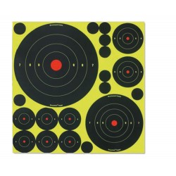 Cibles Shoot-N-C mix 50 cibles et pastilles - Birchwood Casey